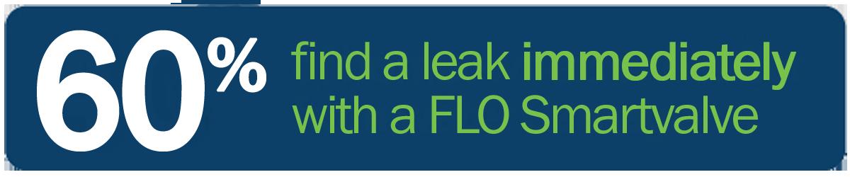 60% Find a Leak Immediately