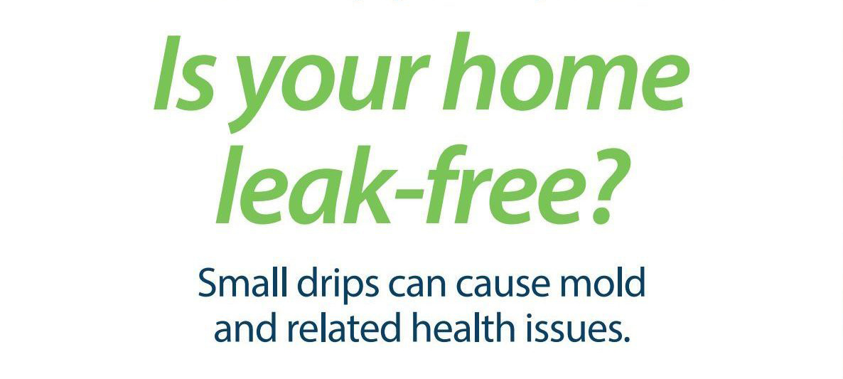 Is Your Home Leak Free?